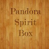 Pandora Spirit Box Speaker