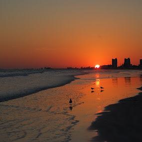 North Myrtle Beach by Angel Harvey - Novices Only Landscapes ( sunset, ocean, beach, north myrtle, evening,  )