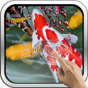 Interactive Koi Fish 3D icon