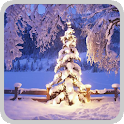 Christmas live tree 1 icon