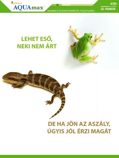 Optimum® AQUAmax® katalógus