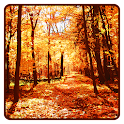 Herbst wallpaper icon
