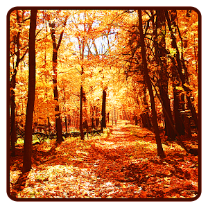 download Autumn Wallpaper apk