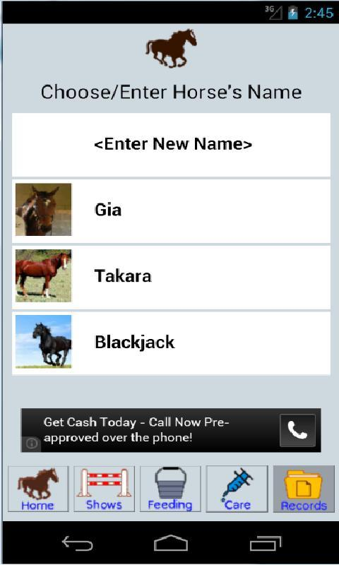 Horsing Around Application - screenshot