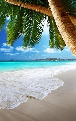 Tropical Beach Live Wallpaper 18.0 screenshots 2