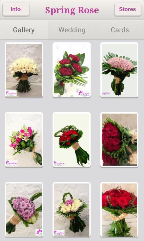 Spring Rose - زهرة الربيـع - screenshot