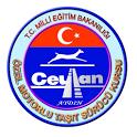 Ceylan Surucu Kursu Ehliyet icon