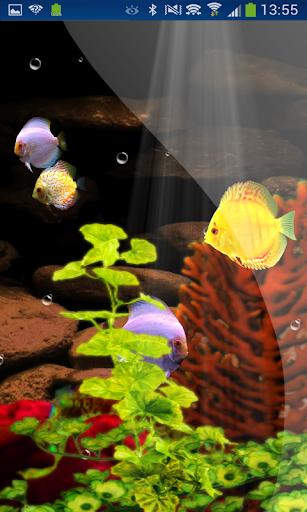 Coral Reefs Aquarium hd LWP