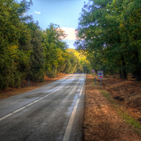 HDR again by Tariq Ouhti - Novices Only Landscapes ( el hajeb, ifrane, morocco, maroc )
