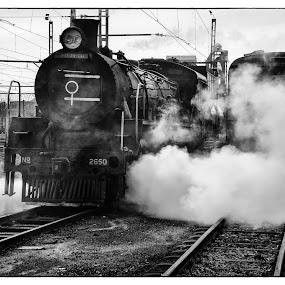 Friends of the Rail by Richard Ryan - Transportation Trains ( railways, steam train, train, steam,  )