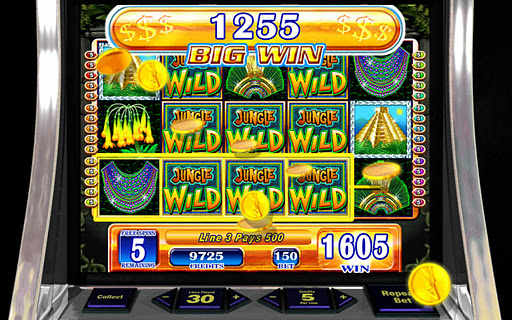 Jungle Wild - HD Slot Machine - screenshot