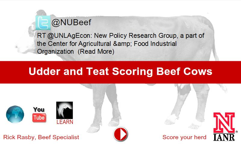 Udder & Teat Scoring Beef Cows - screenshot