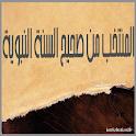 المنتخب من صحيح السنة النبوية icon