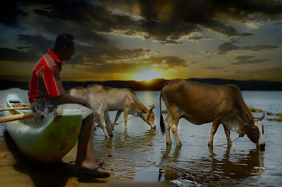 On sun set by Kasun Priyadarsana - People Professional People