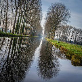 Diagonal Channel by Arti Fakts - Landscapes Waterscapes ( water, mirror, reflection, tree, waterscape, grass, blue, green, reflexion, artifakts, channel, prairie,  )