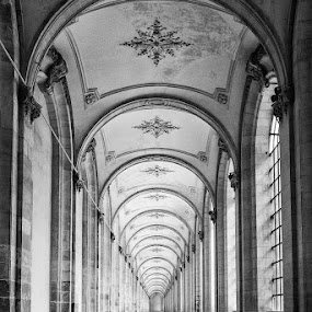 Monsatery in Arras by Wim De Koster - Black & White Buildings & Architecture ( pattern, arras, monastery, france,  )