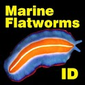 Marine Flatworms ID icon