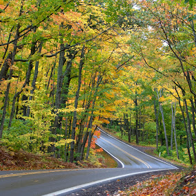 Fall Ride by Jill Laudenslager - Landscapes Forests ( michigan, color, fall, leaves, roads )