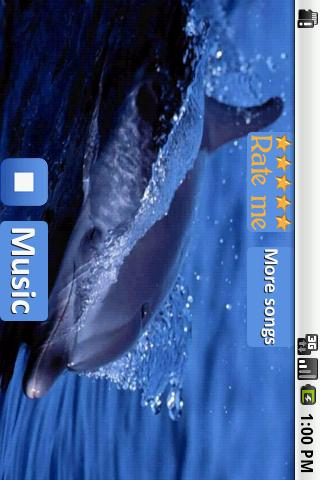 Dolphins - Sound to relax- screenshot