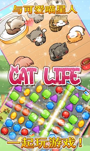 终极治愈系猫咪养成益智游戏—catlife