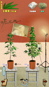 Weed Firm: RePlanted v1.5.0