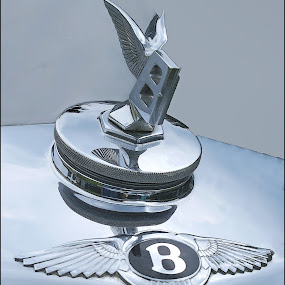 Hood Ornament by Joseph T Dick - Illustration Products & Objects