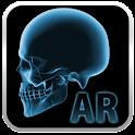 Popar Human Anatomy Chart icon