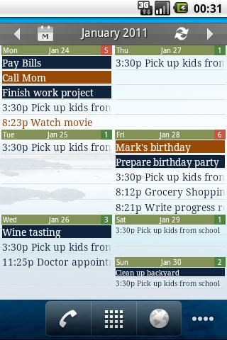 Checkmark All-in-One Calendar - screenshot