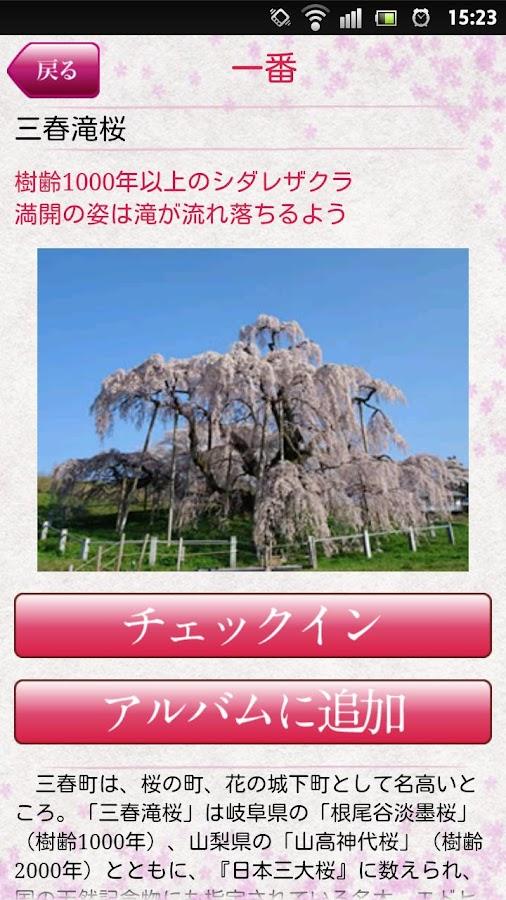 東北・夢の桜街道- screenshot