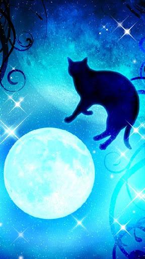 Moon&Blackcat Kirakira(FREE) 1.00 Windows u7528 2