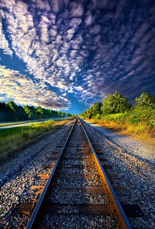 All The Way Home by Phil Koch - Transportation Railway Tracks ( vertical, photograph, yellow, leaves, love, sky, nature, tree, autumn, train, flower, orange, twilight, agriculture, horizon, portrait, environment, dawn, serene, trees, floral, wisconsin, natural light, railroad, phil koch, spring, photography, sun, rail, horizons, clouds, office, park, green, tracks, scenic, morning, shadows, wild flowers, field, red, blue, sunset, fall, peace, meadow, summer, sunrise, earth, landscapes, , vertical lines, pwc )