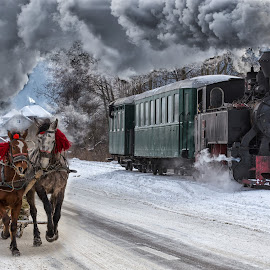 by Pascal Hubert - Transportation Other ( winter, horse, snow, steam_train, train, romania, sled )