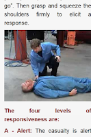 Screenshot of First Aid Manual 2013