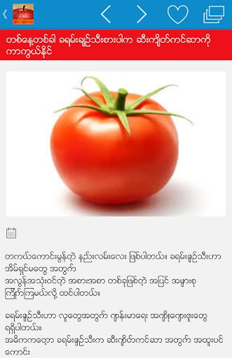 Myanmar Health