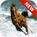 Horses Wallpapers icon