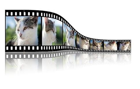 免費工具App|照片和視頻編輯器|阿達玩APP