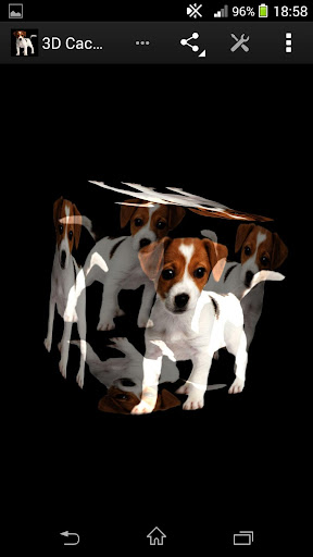3D犬小狗壁纸