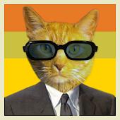 Cat-ify: Cat Lover Sticker App