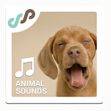 Animal Sounds Ringtones icon