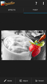 Smoothie Photo Effects Screenshot 2
