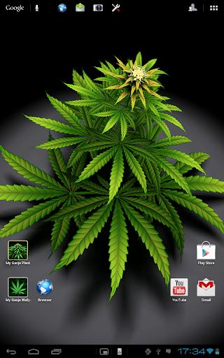 My Ganja Plant Live Wallpaper