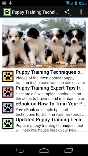 Puppy Training Techniques