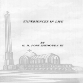 Experiences in Life