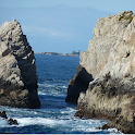 Point Lobos Wallpapers – Free logo