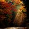 DSC_0036 (2)_pe.jpg