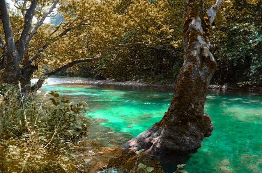 by Tassos Makris - Landscapes Waterscapes ( colors, greece, summer, pindos, photography )
