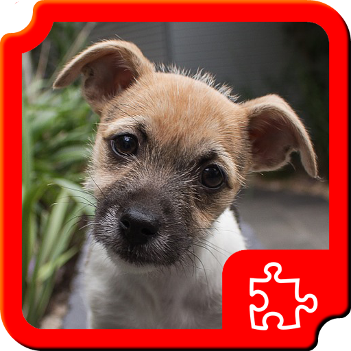 解謎App 小狗拼圖 LOGO-3C達人阿輝的APP
