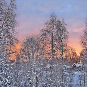 In a house in the forest ends. by Elisabeth Johansson - Landscapes Sunsets & Sunrises
