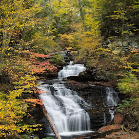 Mohican Falls by Tim Devine - Landscapes Waterscapes ( mohican falls, autumn, waterfall, pennsylvania, ricketts glen state park )
