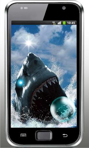 Sharks Dead Dance HQ LWP